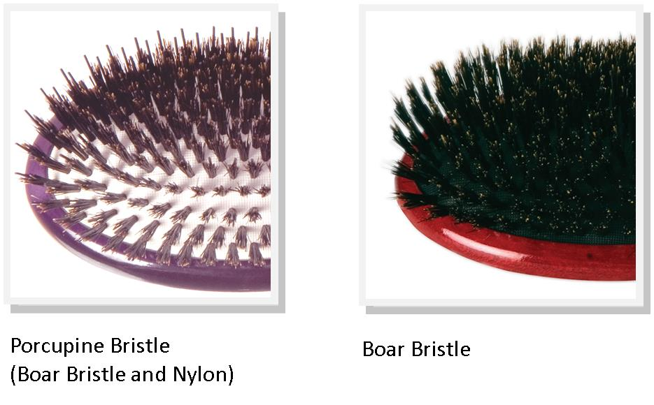 Porcupine and Boar Bristle Cushion Hair Brushes - buy online from i-glamour.com