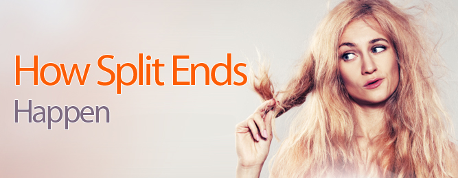 What are Split Ends?